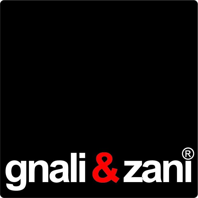 Logo gnali&zani
