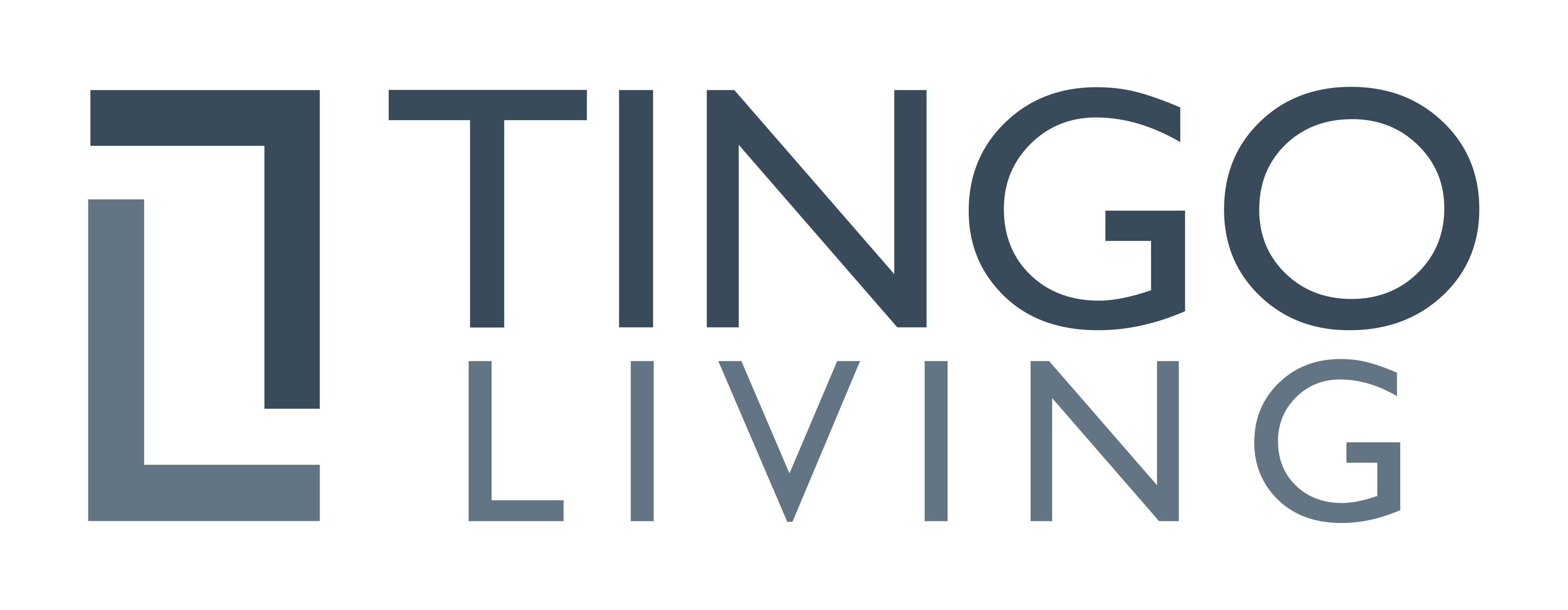 Logo TINGOLIVING