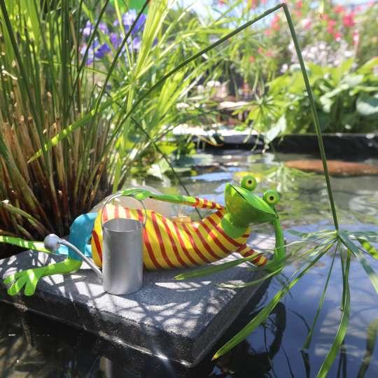 Exner - Frosch Kanu mit am Teich
