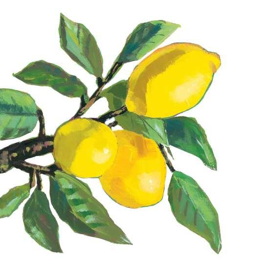 Paperproducts Design Lunchserviette Lemon Musée White – 1333779