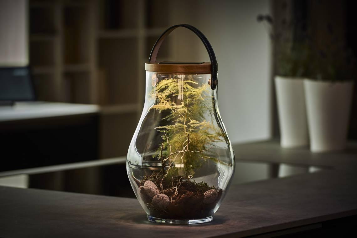 Krinner LUMIX Deco Glass, Grösse L, dekoriert mit Pflanzen