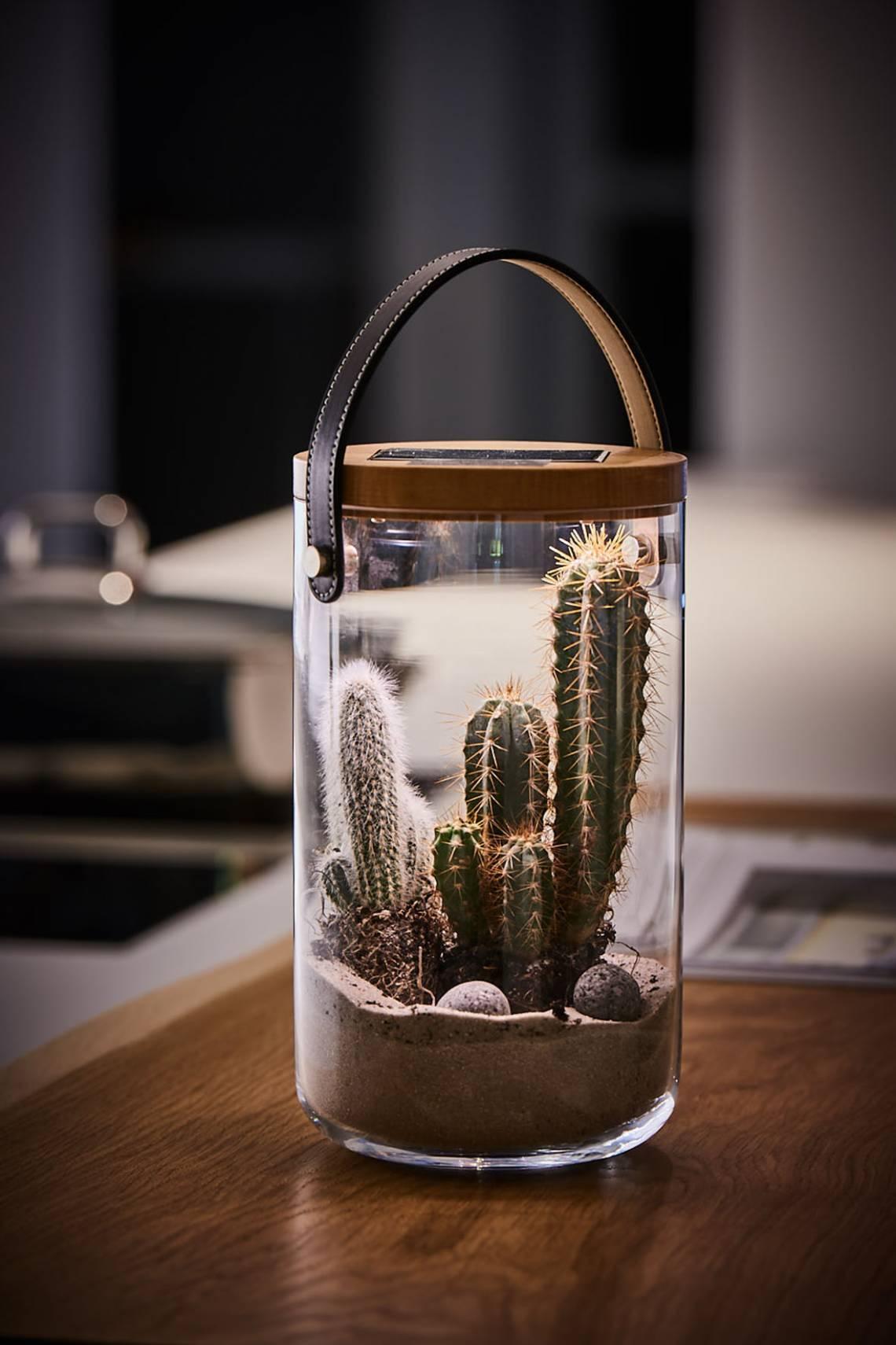 Krinner LUMIX Deco Glass, Grösse M, dekoriert mit Kakteen