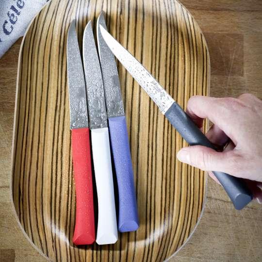 Opinel Bon Appetit+ Tafelmesser-Set Milieu