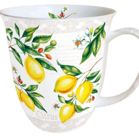 Ambiente Europe Citrus Becher - 18411520