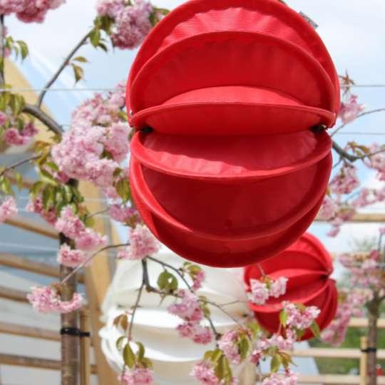 Zeit für Frühling bei barlooon - Outdoor-Lampion weiss und rot, M, Mood 1