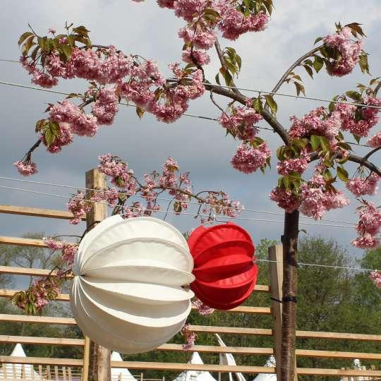 Zeit für Frühling bei barlooon - Outdoor-Lampion weiss M und rot S, Mood 1