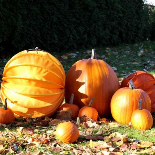 Barlooon: der wetterfeste Lampion, orange, dekoriert mit Kürbissen in der Herbstsonne