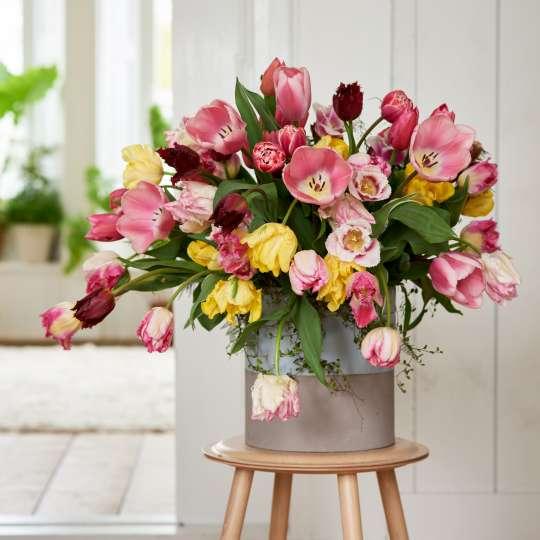 Frühlingshaftes Tulpenensemble