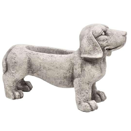 Dekohund Pflanzschale naturfarben