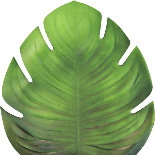 Hoff Interieur TISCHSET TROPICAL LEAF 3644