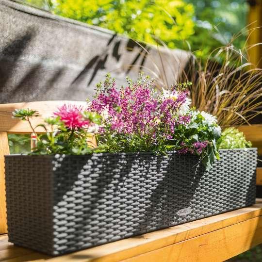 Pflanzbehälter BALCONERA Cottage mit Blumen