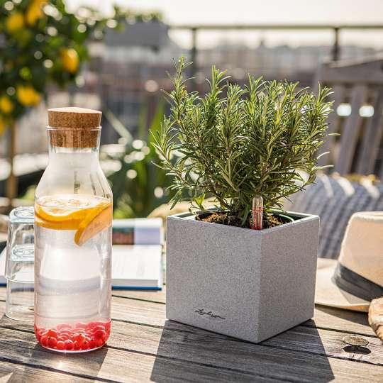 Tisch mit Wasserflasche vor Blumentopf Canto