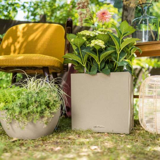 Blumenkübel Canto und Rustico mit Pflanzen