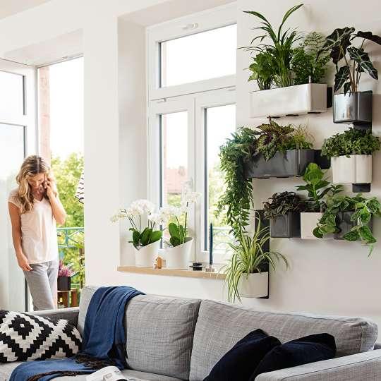 Lechuza: Green up your home! Grün macht glücklich! Cube Glossy Wandmontage / Mood 2
