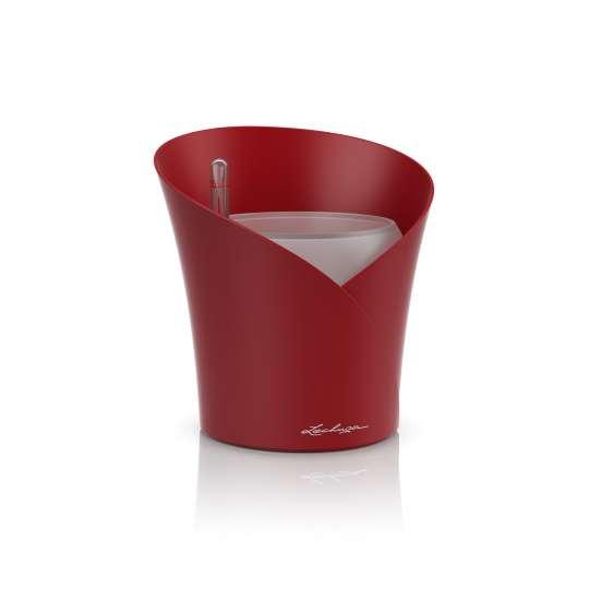 Lechuza Orchidea Scarlet Rot Vase