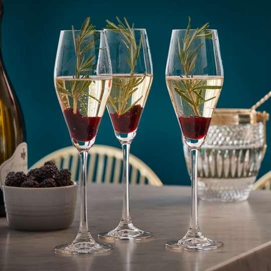 Le-Creuset Fine Dining Drinks Cabinet Sektkelch Brombeer-Rosmarin-Sparkler