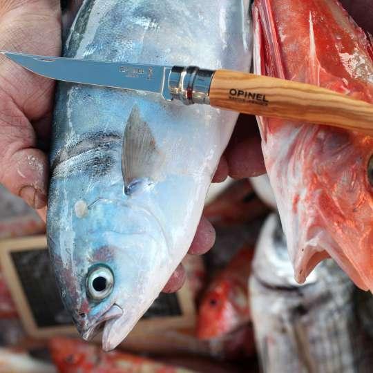 Slim-Line mit Fisch