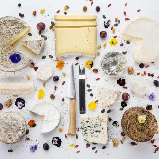 Opinel Käsemesser Set - kulinarisches und optisches Highlight für Genießer