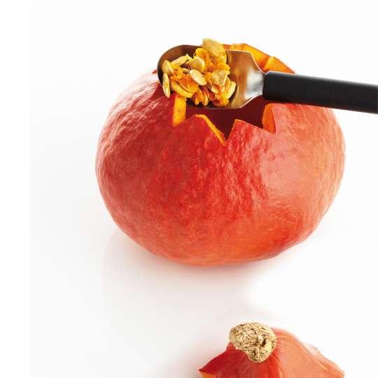Triangle - Tipps & Tricks zum Kürbisschnitzen - Fruchtlöffel