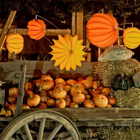 Barlooon: der wetterfeste Lampion, orange, dekoriert mit Kürbissen / Mood 4