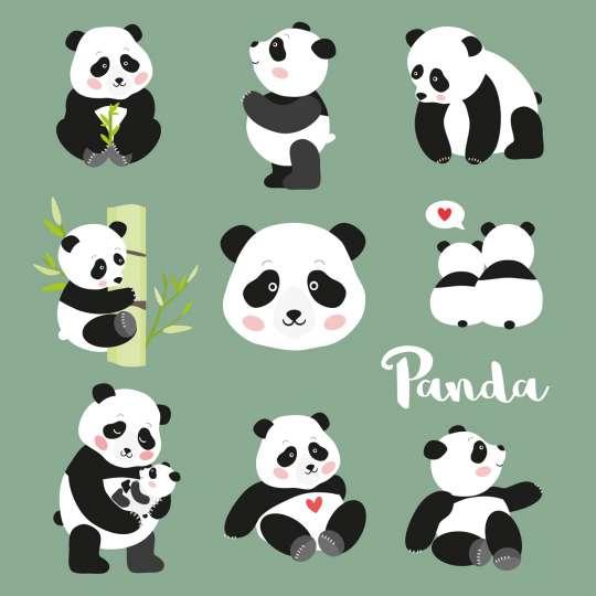 Ambiente: Pandabären Servietten, 13313375, 33 x 33 cm