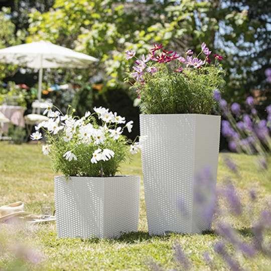 LECHUZA_Bienen lieben Blumen_Pflanzgefässe