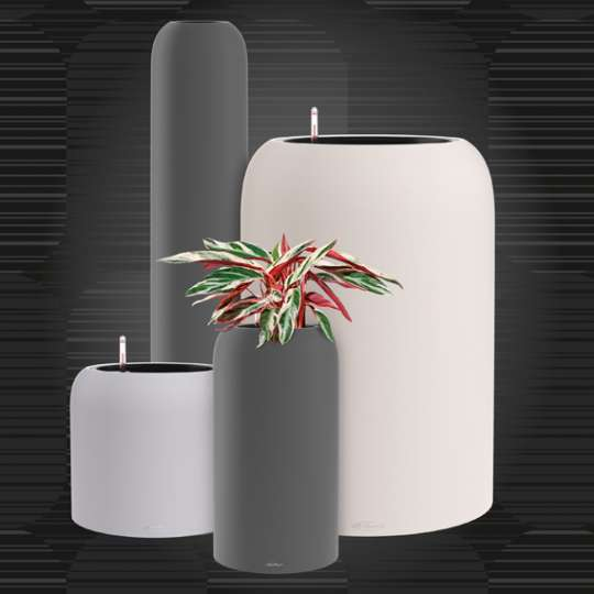 LECHUZA HAVALO - Pflanzgefäße und Vase