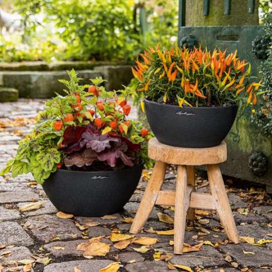 Pflanzgefäß mit Herbstdeko