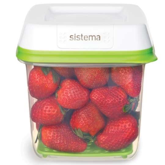 sistema - Frische-Boxen FreshWorks - Dose mit Erdbeeren